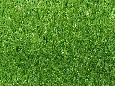 Cheshire Deluxe Grass - Close Up Cheshire Deluxe Grass